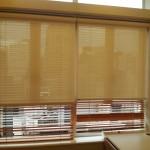 Roller blinds + Wooden blinds (Clinic)